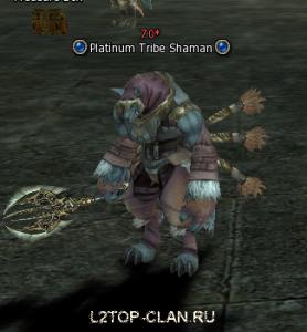 Platinum Tribe Shaman npc, Шаман Платинового Клана нпц